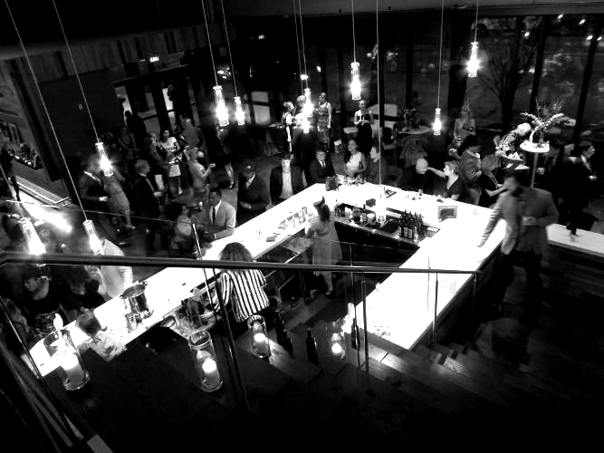 Aerial view of people mingling around a modernistic bar at a private party